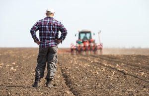 Tips For Choosing The Right Agriculture Executive Recruiting